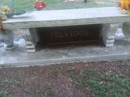 SELVIDGE, PLOT - Harris County, Texas | PLOT SELVIDGE - Texas Gravestone Photos