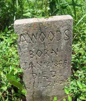 WOODS, A. - Harris County, Texas | A. WOODS - Texas Gravestone Photos
