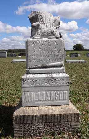 WILLIAMSON, HERMAN B. - Montague County, Texas | HERMAN B. WILLIAMSON - Texas Gravestone Photos