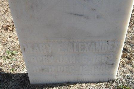ALEXANDER, MARY E. - Parker County, Texas | MARY E. ALEXANDER - Texas Gravestone Photos