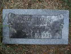 BERRY, AUDY MORISE - Parker County, Texas | AUDY MORISE BERRY - Texas Gravestone Photos