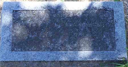 GAMMILL, WILEY G - Parker County, Texas | WILEY G GAMMILL - Texas Gravestone Photos