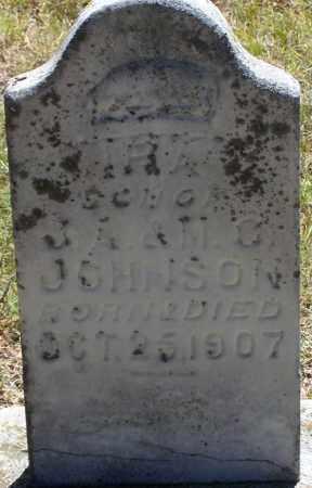 JOHNSON, IRA - Parker County, Texas   IRA JOHNSON - Texas Gravestone Photos