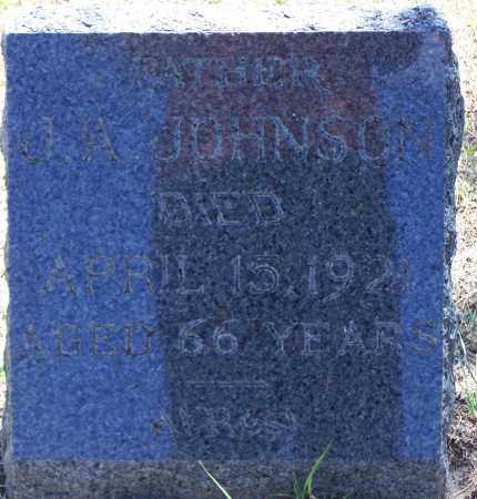 JOHNSON, J A - Parker County, Texas | J A JOHNSON - Texas Gravestone Photos