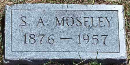 MOSELEY, S A - Parker County, Texas | S A MOSELEY - Texas Gravestone Photos