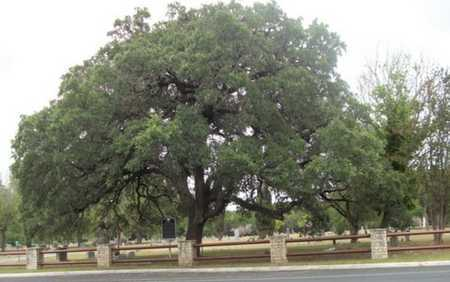 *OVERVIEW,  - Real County, Texas |  *OVERVIEW - Texas Gravestone Photos