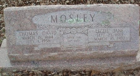 MOSLEY, LIZZIE JANE - Red River County, Texas | LIZZIE JANE MOSLEY - Texas Gravestone Photos