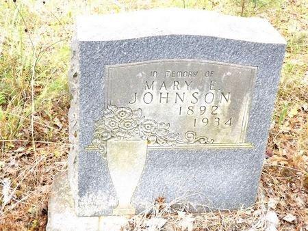 JOHNSON, MARY E - Smith County, Texas | MARY E JOHNSON - Texas Gravestone Photos