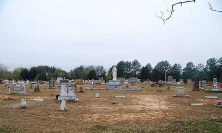 *OVERVIEW,  - Smith County, Texas |  *OVERVIEW - Texas Gravestone Photos