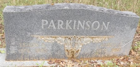 PARKINSON, AMELIA L - Smith County, Texas | AMELIA L PARKINSON - Texas Gravestone Photos