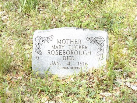 ROSEBOROUGH, MARY - Smith County, Texas | MARY ROSEBOROUGH - Texas Gravestone Photos