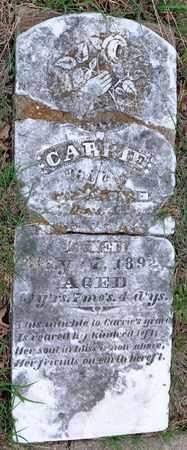 CANTRELL, CARRIE - Tarrant County, Texas | CARRIE CANTRELL - Texas Gravestone Photos