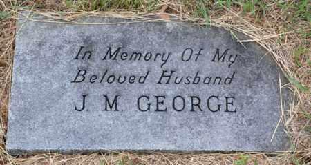 GEORGE, JESSE MADISON - Tarrant County, Texas   JESSE MADISON GEORGE - Texas Gravestone Photos