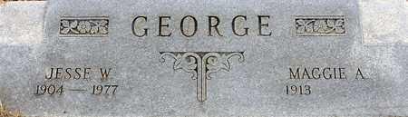 GEORGE, JESSE W - Tarrant County, Texas | JESSE W GEORGE - Texas Gravestone Photos