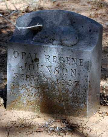 JOHNSON, OPAL REGENE - Tarrant County, Texas | OPAL REGENE JOHNSON - Texas Gravestone Photos