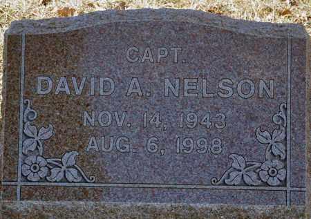 NELSON, DAVID ALAN - Tarrant County, Texas   DAVID ALAN NELSON - Texas Gravestone Photos