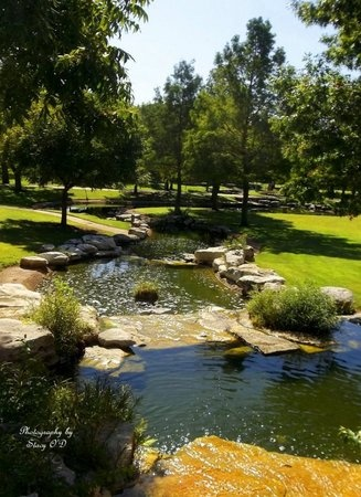 *OVERVIEW,  - Travis County, Texas    *OVERVIEW - Texas Gravestone Photos
