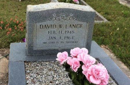 LANGE, DAVID W. - Washington County, Texas   DAVID W. LANGE - Texas Gravestone Photos