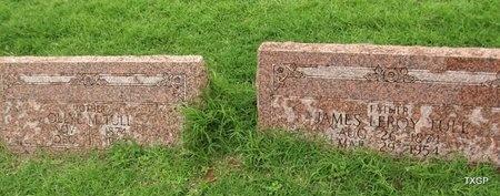 TULL PLOT, A - Wilbarger County, Texas | A TULL PLOT - Texas Gravestone Photos