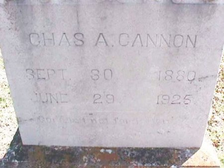 CANNON, CHARLES A. - Wise County, Texas | CHARLES A. CANNON - Texas Gravestone Photos