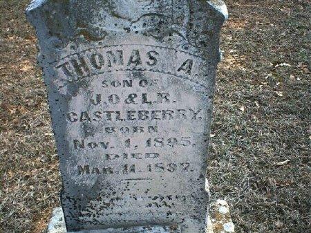 CASTLEBERRY, THOMAS A. - Wise County, Texas | THOMAS A. CASTLEBERRY - Texas Gravestone Photos