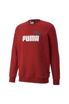 Puma | -108764232 | 58676222