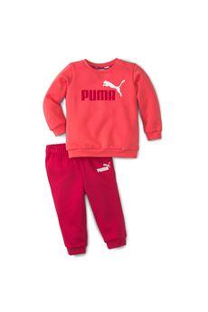 TUTA Puma | 19 | 84614135