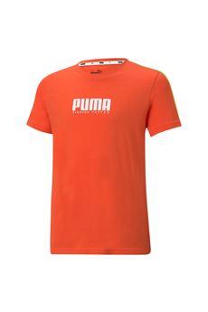 Puma | 8 | 58589979