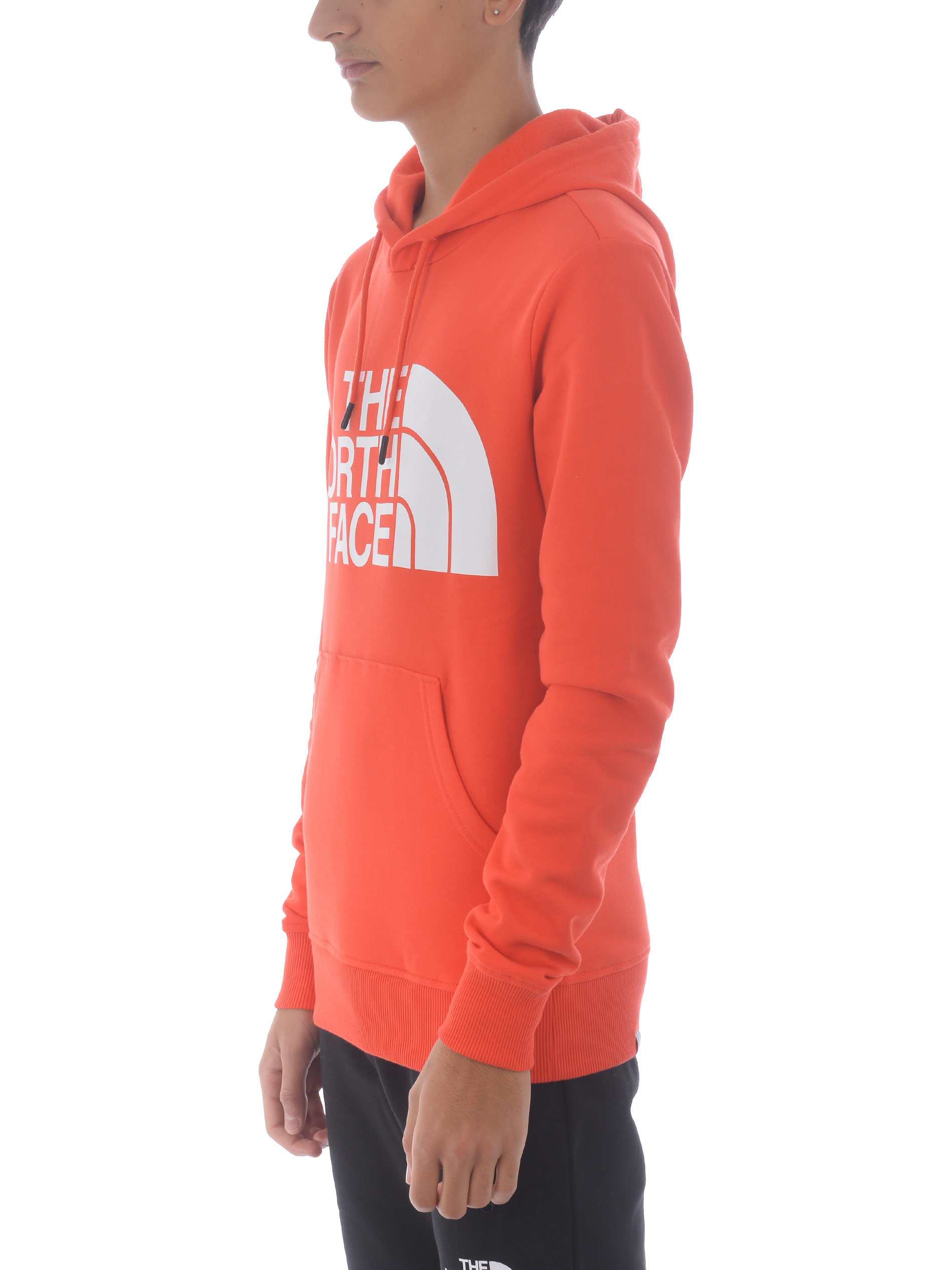 The North Face Standard Hoodie in cotton THE NORTH FACE | 10000005 | NF0A3XYDR151