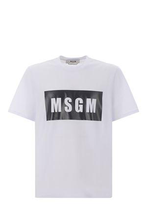 MSGM | 8 | 2000MM520200002-01