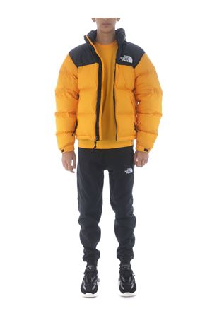 The North Face Retro Nuptse 1996 down jacket THE NORTH FACE | 13 | NF0A3C8D56P1