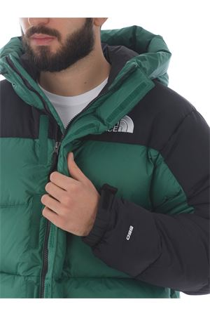 The North Face Himalayan Down Parka down jacket THE NORTH FACE | 13 | NF0A4QYXNL11