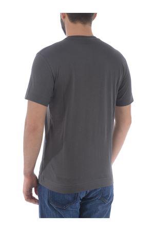 T-shirt Emporio Armani in cotone supima EMPORIO ARMANI | 8 | 3K1TE61JSHZ-0679