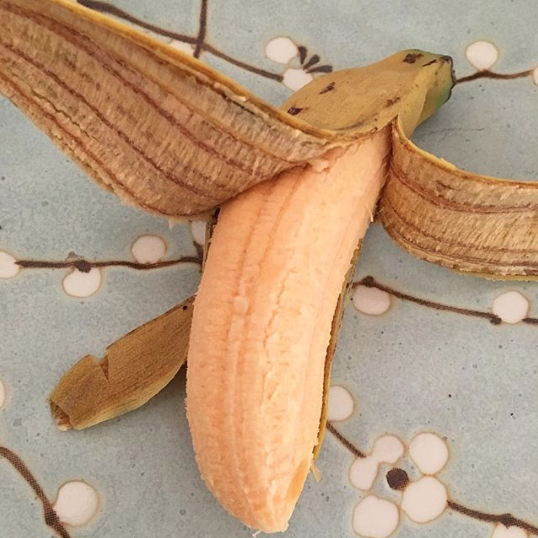 These homegrown organic bananas were so dang delicious! - How to grow organic bananas
