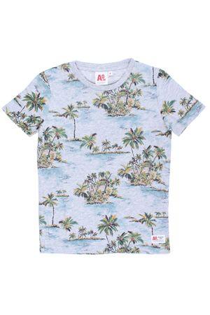 T-shirt manica corta in cotone AMERICANOUTFITTERS | 8 | 2101-25914