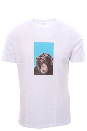 T-shirt in jersey stampa fotografica ALTEA | 8 | 205525008