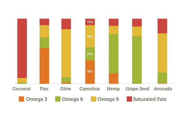 Camelina Oil vs Other Oils (Trends)