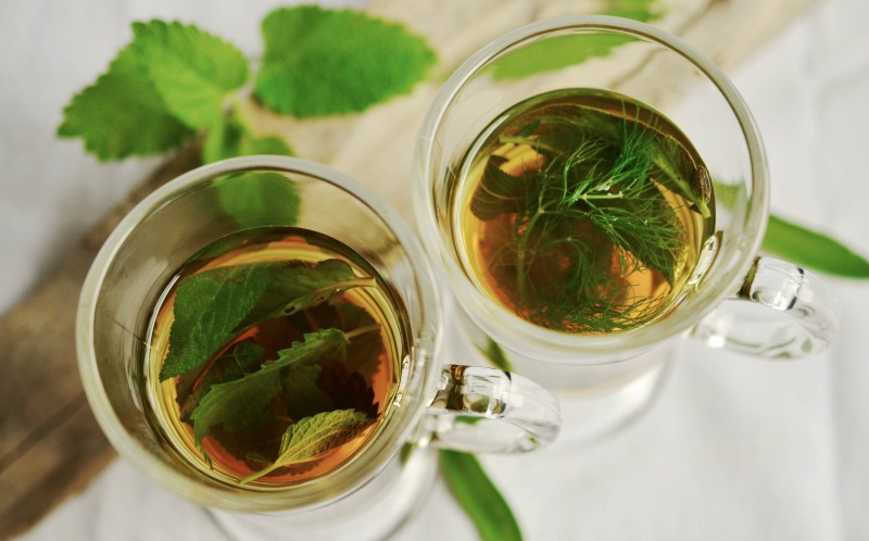 Drinking Green Tea Improves Body Metabolism