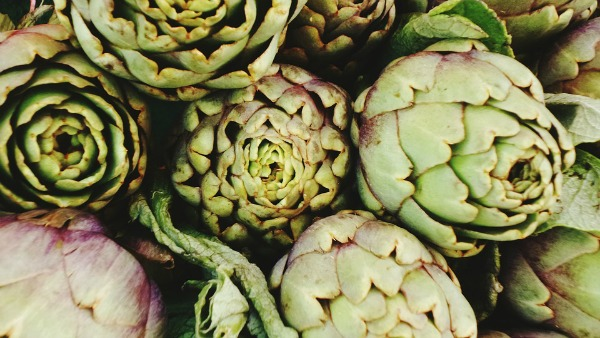 artichokes are a great food for the liver and gallbladder