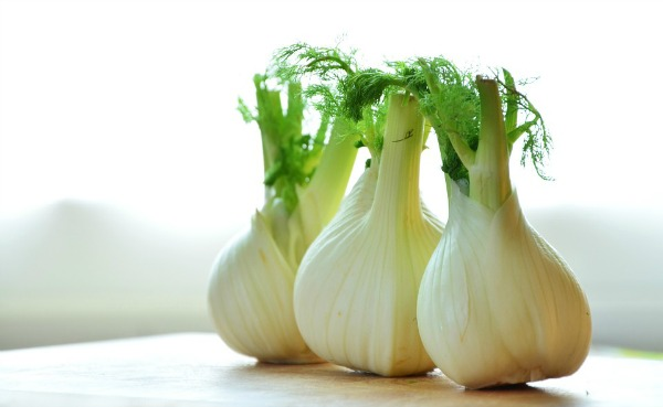 fennel extremely high in fiber, making it a great addition to any diet