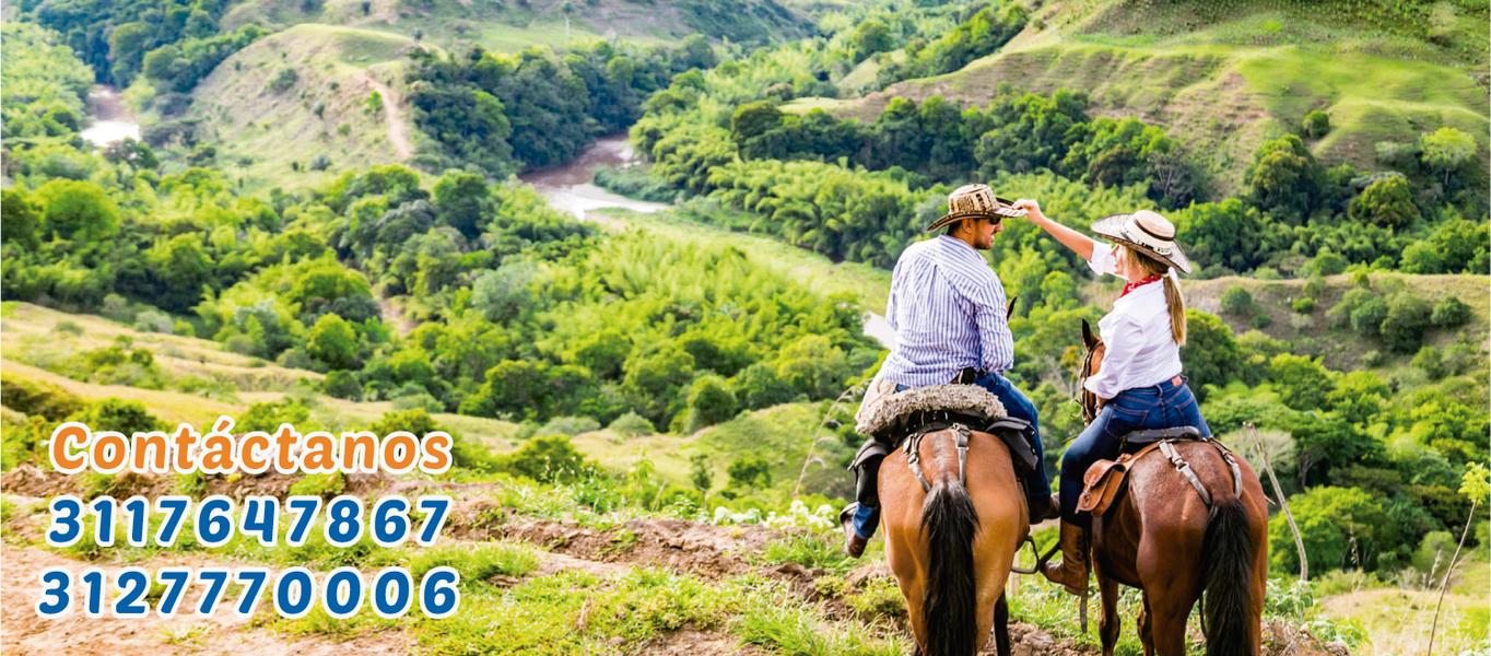 Paseo a caballo por el Quindio