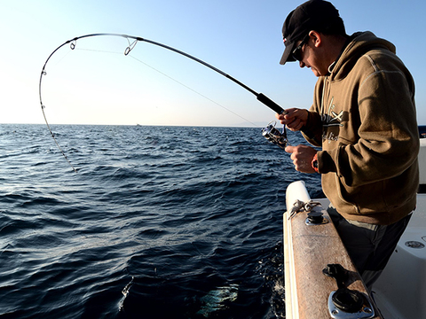 Pesca Recreativa x Hora