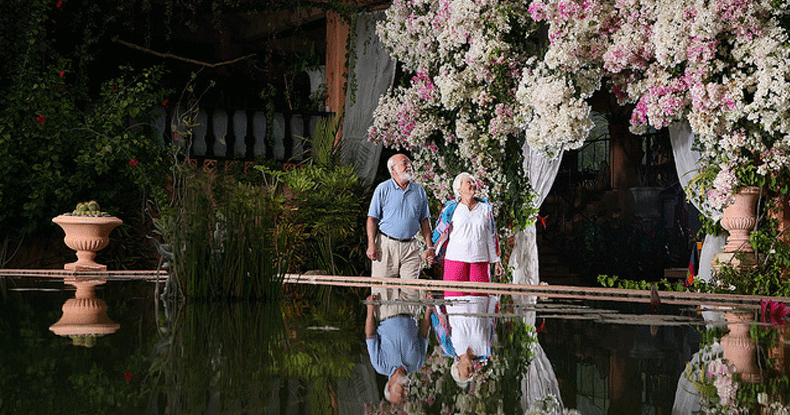 Jardín Botánico de Vallarta, uno de los mejores de Norteamérica.