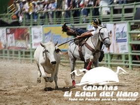 20° Mundial de Coleo - En Villavicencio