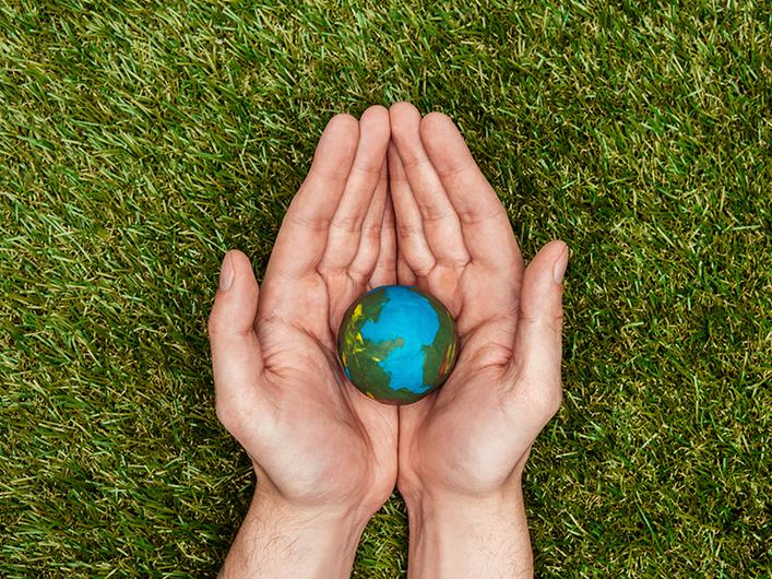 5 formas de cuidar el planeta como Hotel Rosita