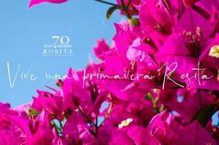 Primavera Rosita