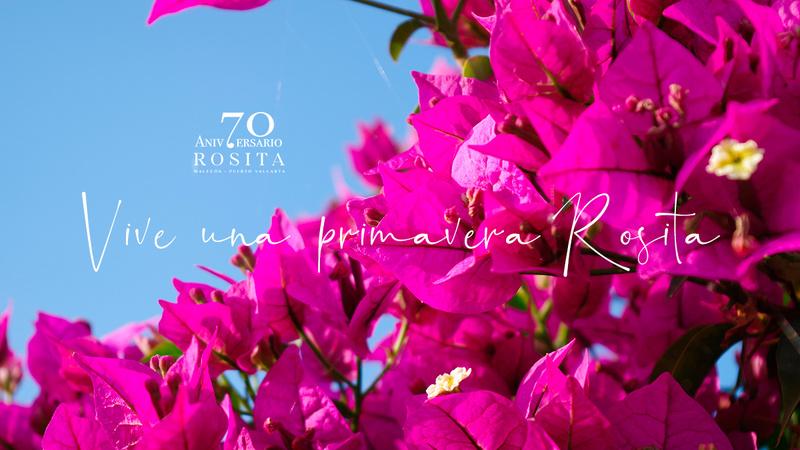 Spring Rosita