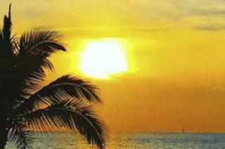 Descubre lo mejor de Puerto Vallarta en Hotel El Pescador
