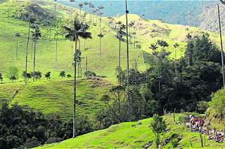 COFFEE CULTURAL LANDSCAPE: WORLD HERITAGE