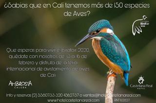 Castellana Real listo para vivir El BirdFair 2020
